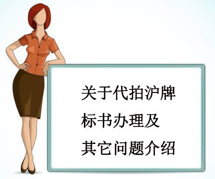 关于代拍沪牌标书办理及其它问题介绍